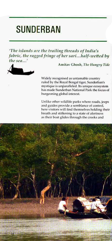 Wild Trail in Bengal 1st page