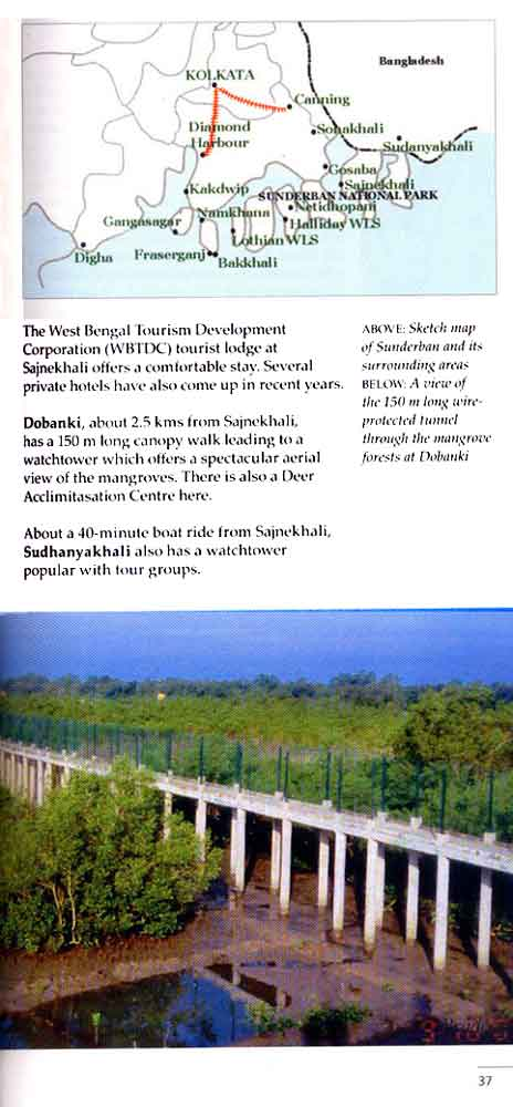 Wild Trail in Bengal 24th page